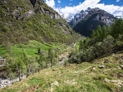 Verzasca-Tal-Foto-Schweiz-Tessin-(112-von-18)
